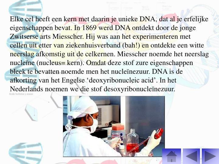 Elke cel heeft een kern met daarin je unieke DNA, dat al je erfelijke eigenschappen bevat. In 1869 werd DNA ontdekt door de jonge Zwitserse arts Miesscher. Hij was aan het experimenteren met cellen uit etter van ziekenhuisverband (bah!) en ontdekte een witte neerslag afkomstig uit de celkernen. Miesscher noemde het neerslag nucleïne (nucleus= kern). Omdat deze stof zure eigenschappen bleek te bevatten noemde men het nucleïnezuur. DNA is de afkorting van het Engelse 'deoxyribonucleic acid'. In het Nederlands noemen we die stof desoxyribonucleïnezuur.