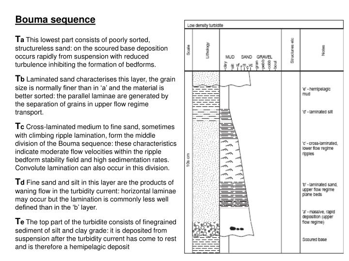 Bouma sequence