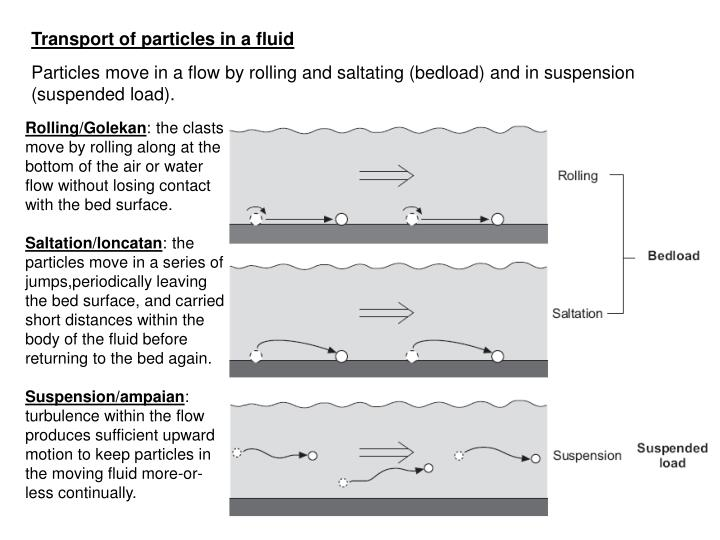 Transport of particles in a fluid