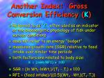 another index gross conversion efficiency k
