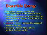 digestible energy1