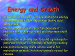 energy and growth1