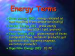 energy terms