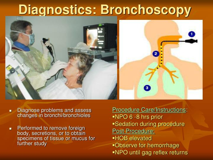 Diagnose problems and assess changes in bronchi/bronchioles