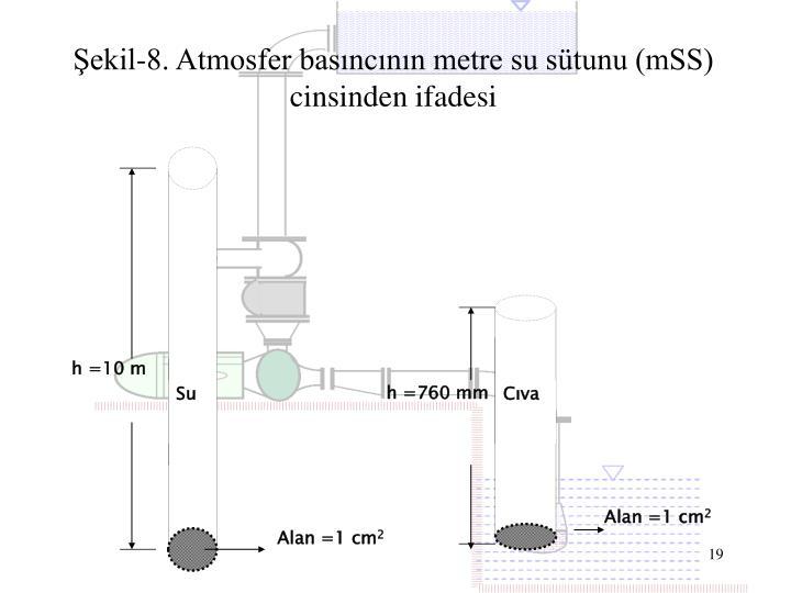 h =10 m