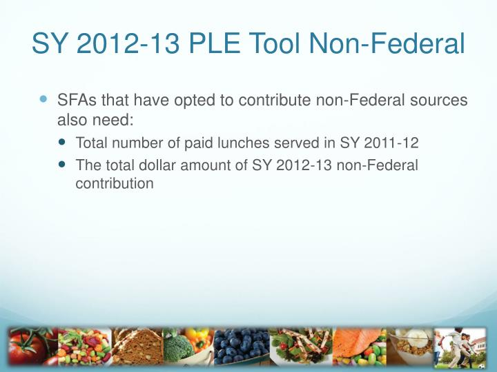 SY 2012-13 PLE Tool Non-Federal