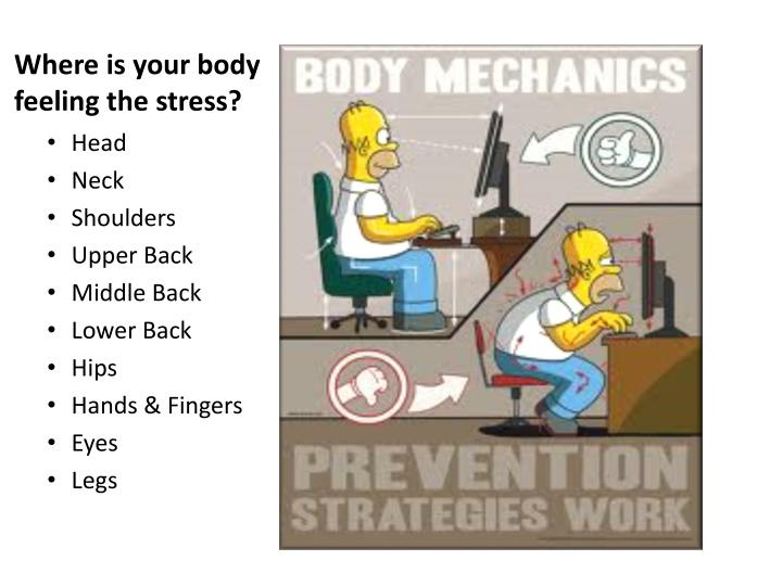 Where is your body feeling the stress?
