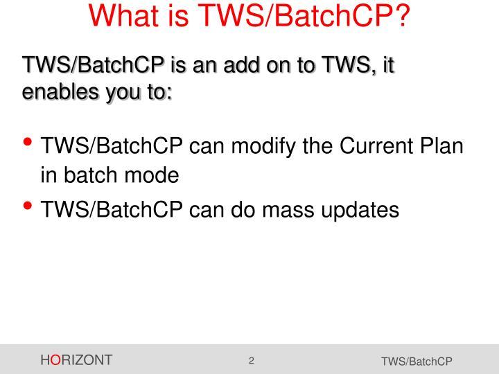 What is TWS/BatchCP?