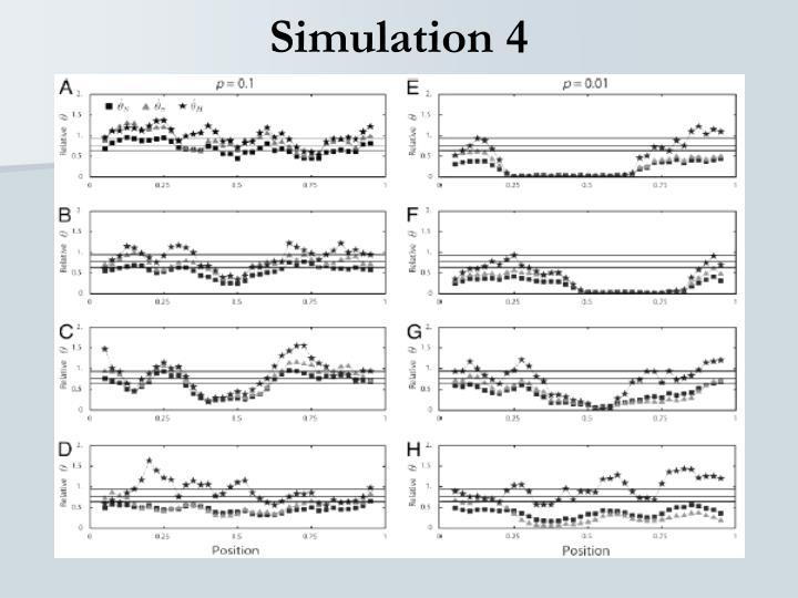Simulation 4