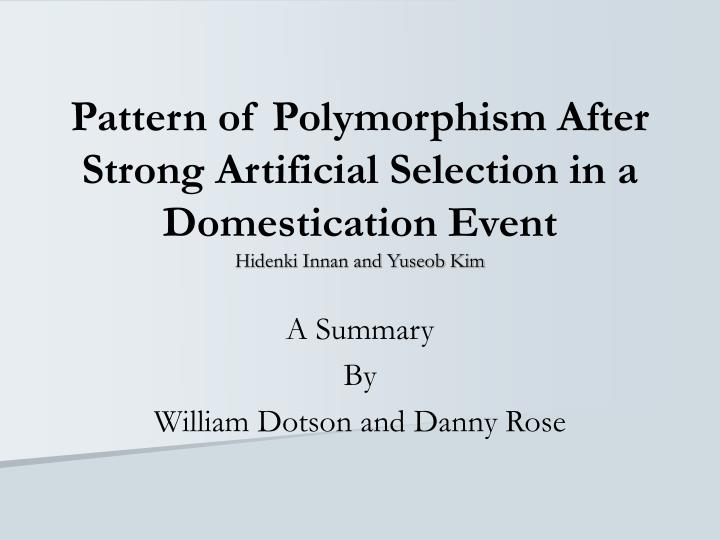 Pattern of Polymorphism After Strong Artificial Selection in a Domestication Event