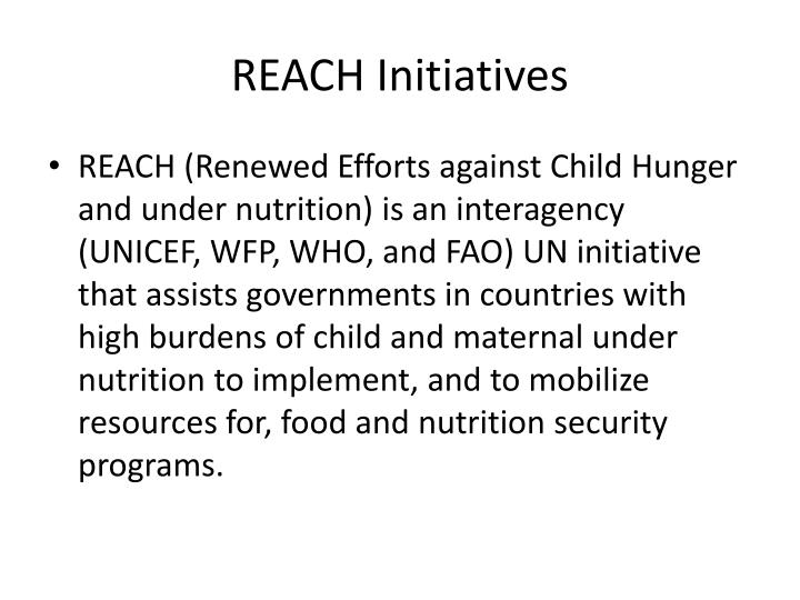 REACH Initiatives