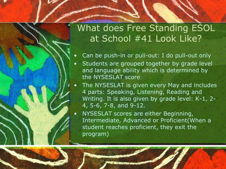 What does Free Standing ESOL at School #41 Look Like?
