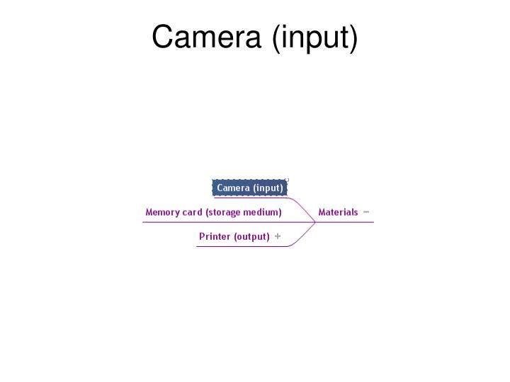 Camera (input)