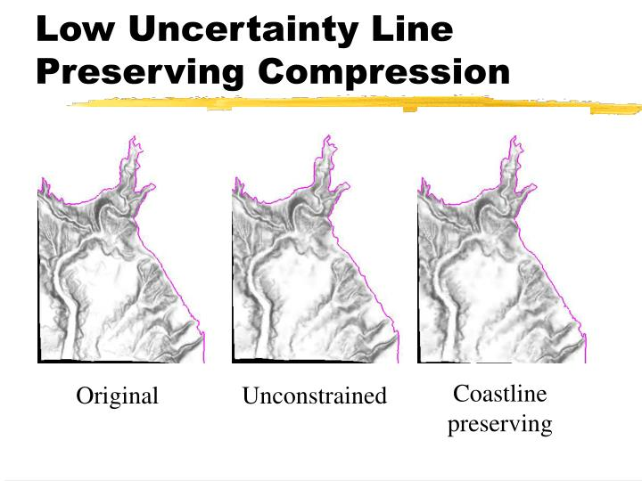 Low Uncertainty Line Preserving Compression