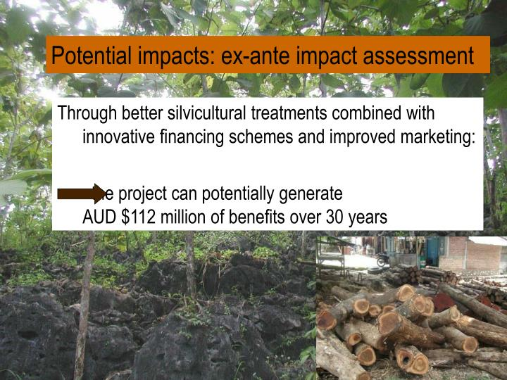 Potential impacts: ex-ante impact assessment