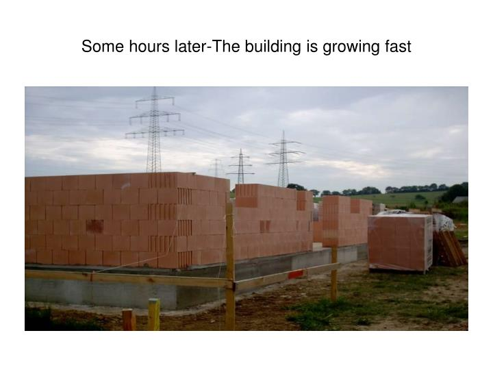 Some hours later-The building is growing fast