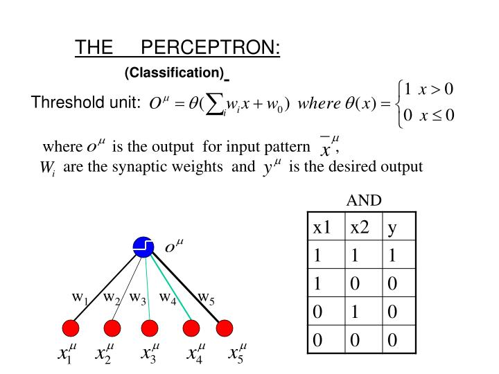 THE     PERCEPTRON: