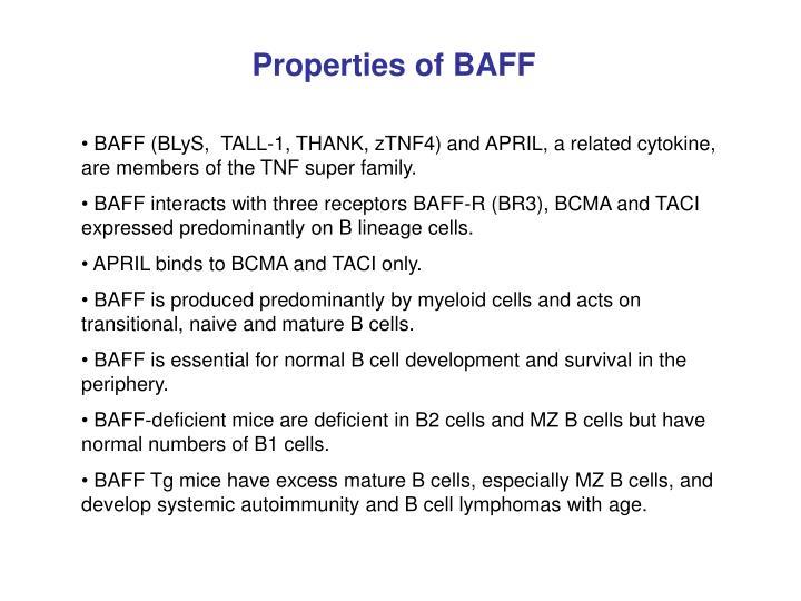 Properties of BAFF