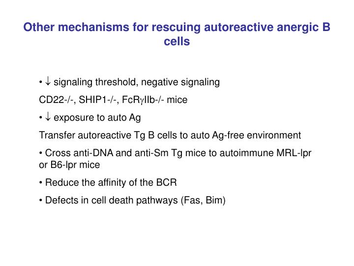Other mechanisms for rescuing autoreactive anergic B cells