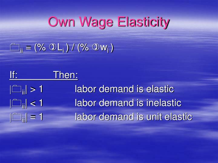 Own Wage Elasticity