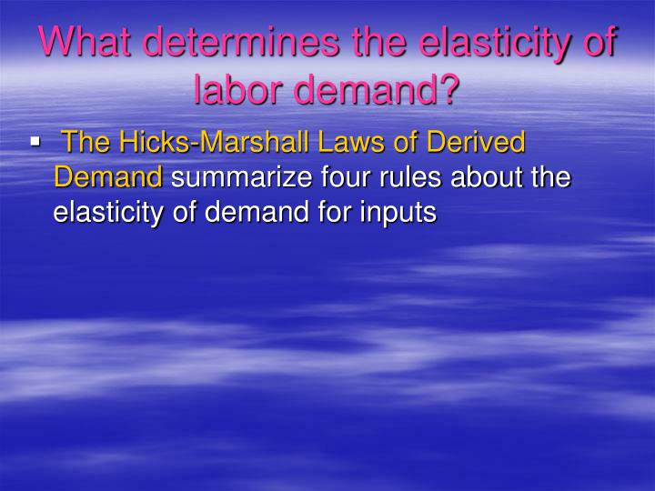 What determines the elasticity of labor demand?