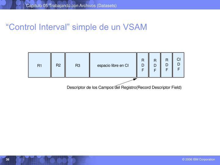 """Control Interval"" simple de un VSAM"