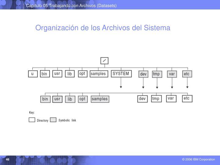 Organización de los Archivos del Sistema