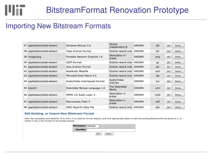 BitstreamFormat Renovation Prototype