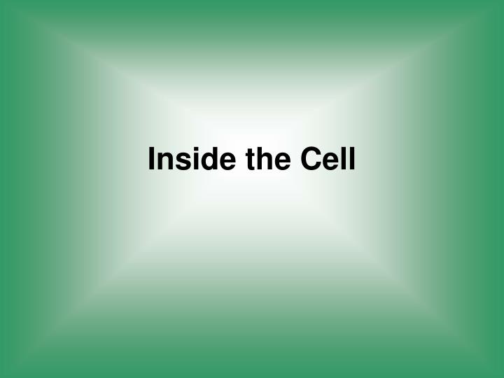 Inside the Cell