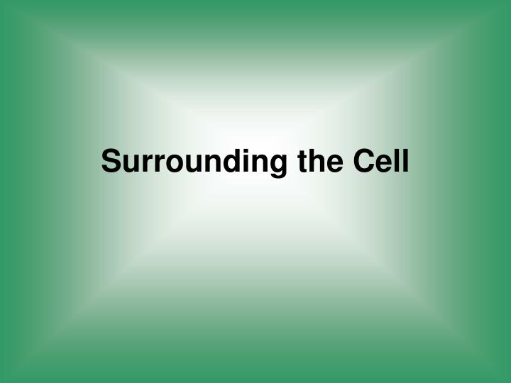Surrounding the Cell