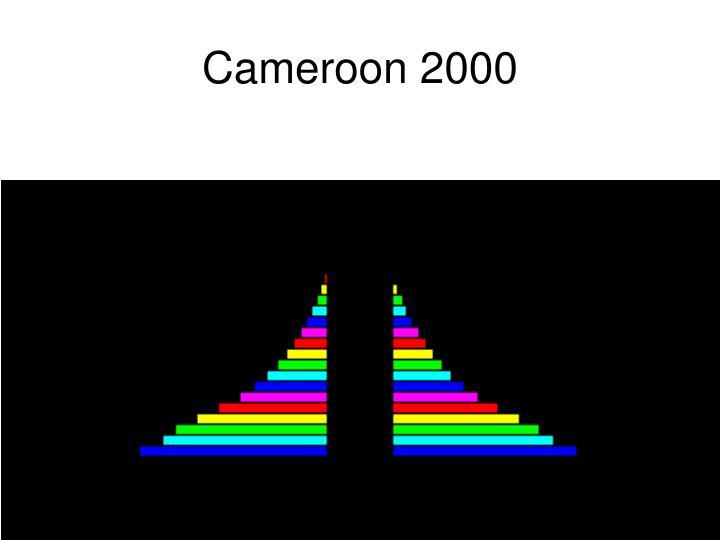 Cameroon 2000