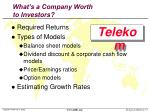 what s a company worth to investors