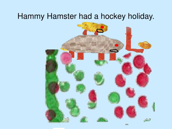 Hammy Hamster had a hockey holiday.