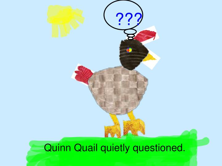 Quinn Quail quietly questioned.