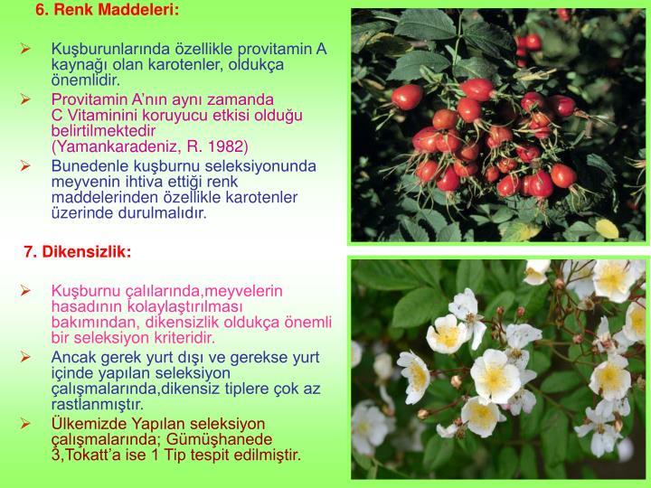 6. Renk Maddeleri:
