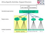 africa specific activities support structure