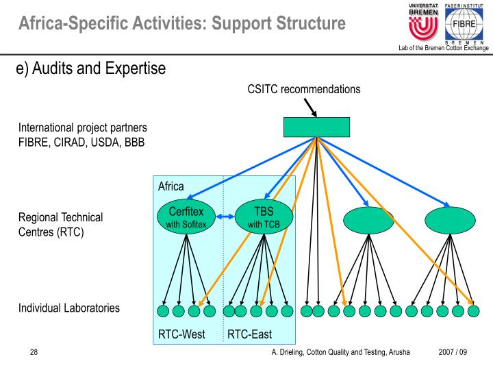 Africa-Specific Activities: Support Structure