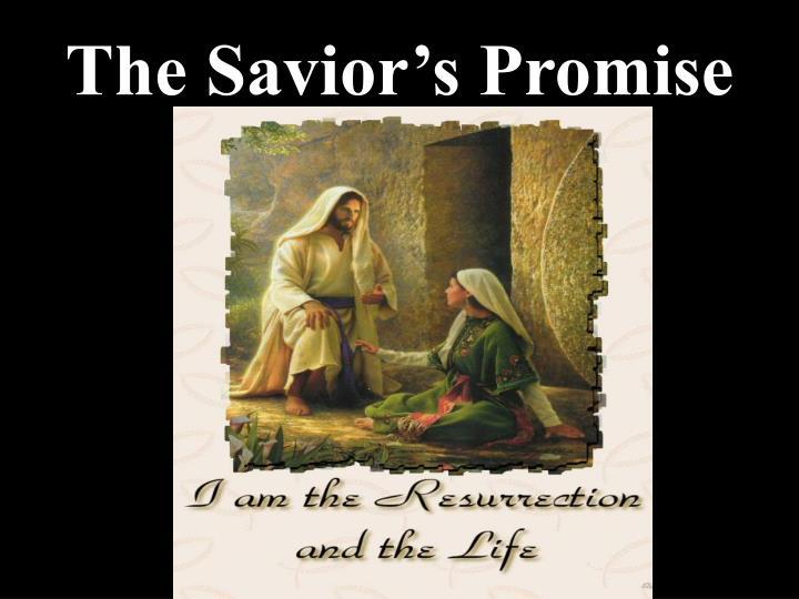 The Savior's Promise