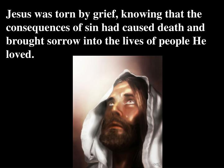 Jesus was torn by grief, knowing that the consequences of sin had caused death and brought sorrow into the lives of people He loved.