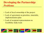 developing the partnership problems1