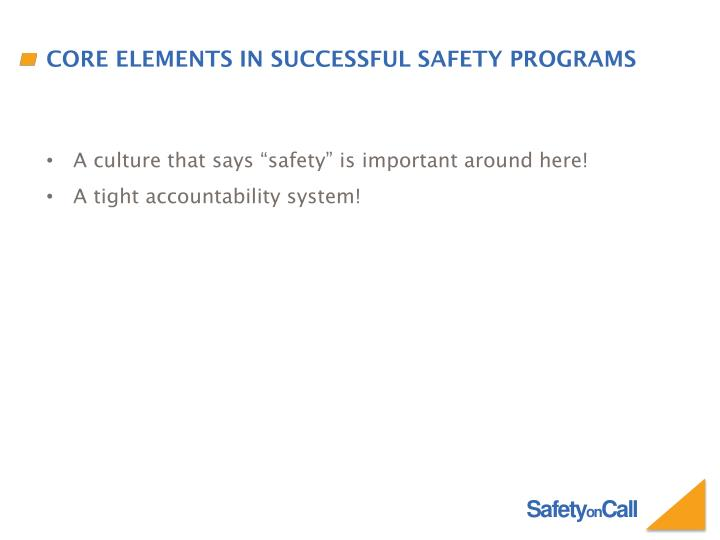 Core Elements in Successful Safety Programs