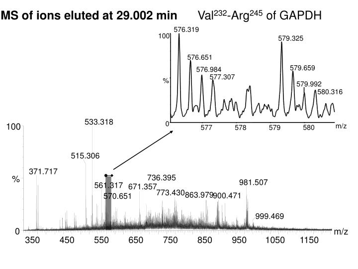 MS of ions eluted at 29.002 min