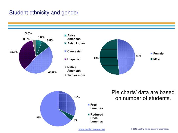 Student ethnicity and gender