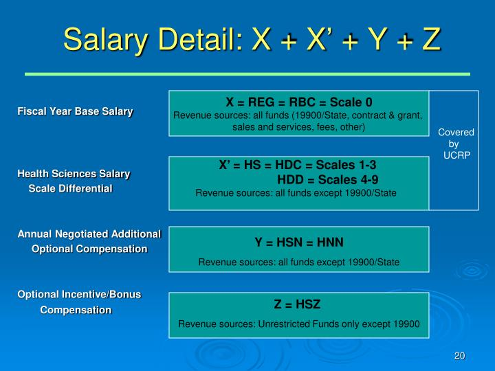 Salary Detail: X + X' + Y + Z