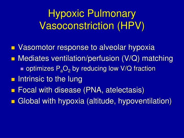 Hypoxic Pulmonary Vasoconstriction (HPV)