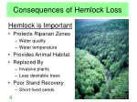 consequences of hemlock loss