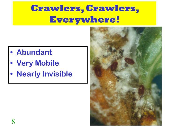 Crawlers, Crawlers, Everywhere!