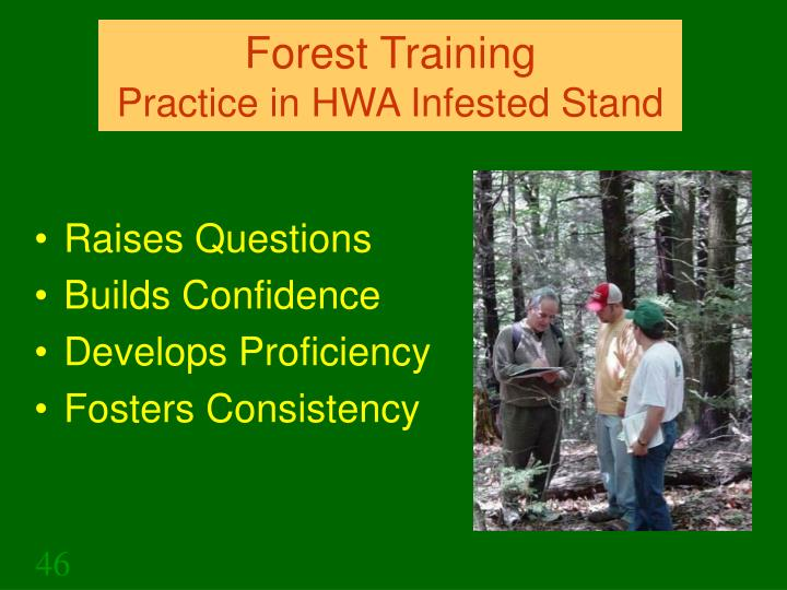 Forest Training