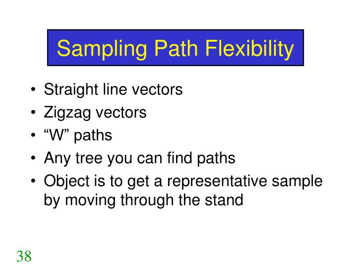 Sampling Path Flexibility