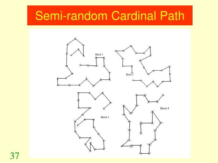 Semi-random Cardinal Path